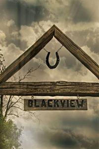 Blackview Farm